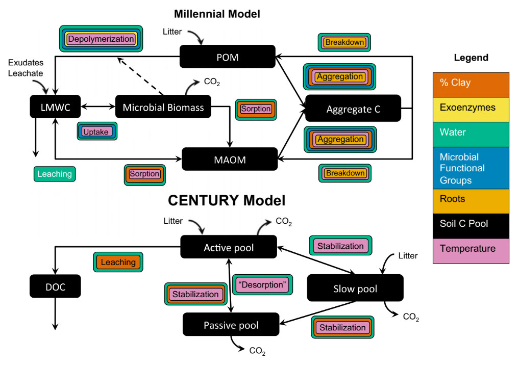 Millenial Model Schematic Diagram